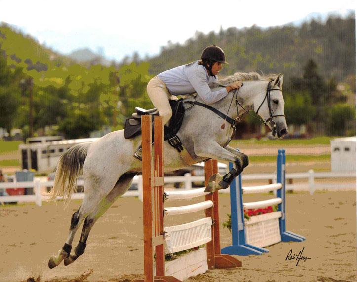 Arabian Horses Jumping
